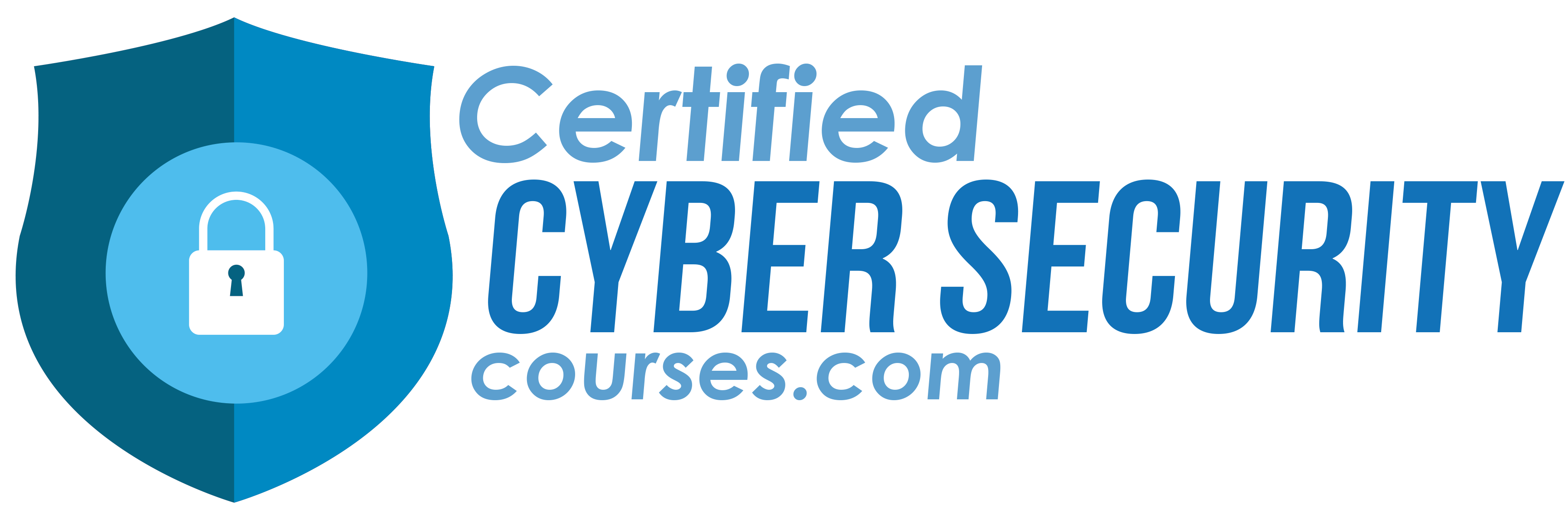 Certified Cyber Security Courses